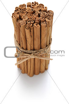 ceylon cinnamon sticks isolated on white background