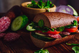 Sandwich with Rye Bread, Cheese and Vegetables