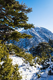 Ziria mountain covered with snow on a winter day, South Peloponnese, Greece