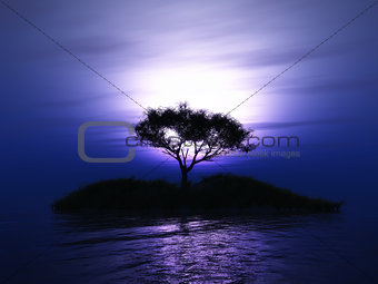 3D tree on an island against a sunset sky