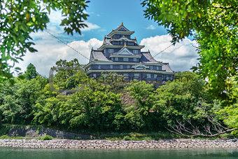 Okayama castle behind trees, Japan