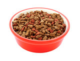 Dry cat biscuits in a red pet food bowl