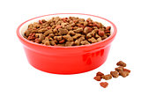 Dry cat food in a red bowl, biscuits spilled beside