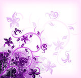 Floral violet on grunge background. Vector