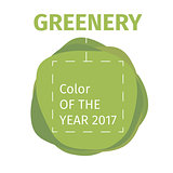 Color of the year 2017. Greenery beautiful trendy infographic