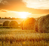 Summer Farm Field with Hay Bales at Sunset.