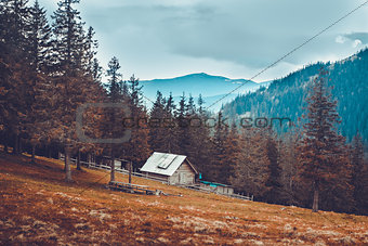 Old rural house in the Carpathian mountains