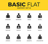 Basic set of anatomy icons