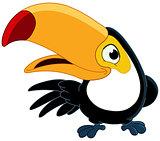 Smiling toucan