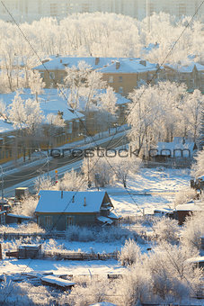 town street with frozen trees