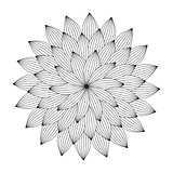 Graphic Mandala with abstract petals . Zentangle inspired style.