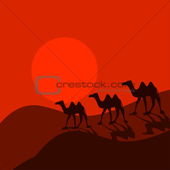 Camel caravan in desert cartoon vector.