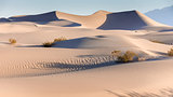 Early Morning On The Mesquite Flat Sand Dunes