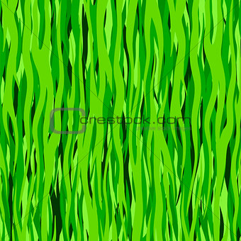 Abstract Line Green Pattern.