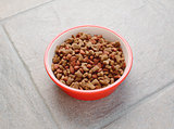 Red bowl of dry cat food on grey tile