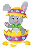 Easter bunny in eggshell theme image 1