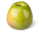 Tasty ripe green apple