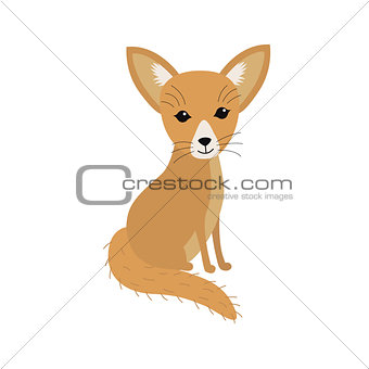 Small African fox Fennec
