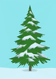 Landscape, Christmas Fir Tree