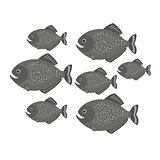 Piranha a school of fish. vector illustration for children