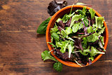 green salad mix - spinach, arugula, lettuce