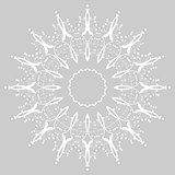 Floral Ornament Pattern