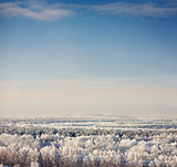 winter landscape with blue sky