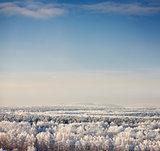 winter landscape with blue sky