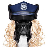 policeman or policewoman with dog