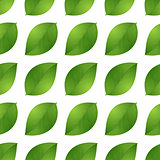 leaves seamless isolated