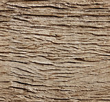 Seamless background with old wooden plank