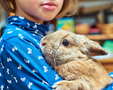 Schoolgirl holding a nice rabbit on shoulder