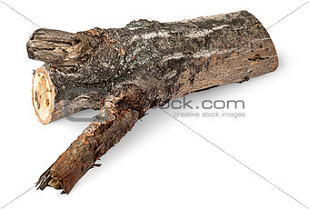 Single poplar log horizontally