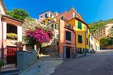 Picturesque view of Manarola, Liguria, Italy