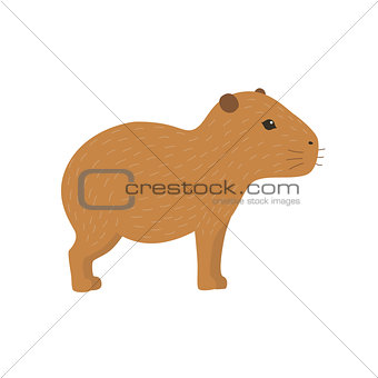 Capybara vector illustration