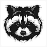 Raccoons head logo for sport club or team.