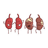 Kidneys Human Internal Organ Healthy Vs Unhealthy, Medical Anatomic Funny Cartoon Character Pair In Comparison Happy Against Sick And Damaged