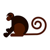 Monkey flat style vector illustration.