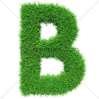 Green Grass Letter B