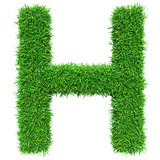 Green Grass Letter H