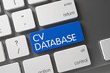 Keyboard with Blue Keypad - CV Database. 3D.
