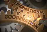 International Cooperation. 3D.