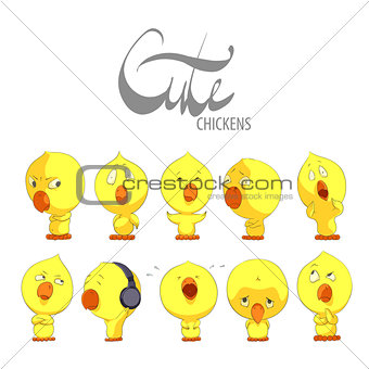 Cute yellow chickens