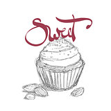 sweet cupcake illustration