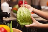 Making a vegetables salad, washing ingredients