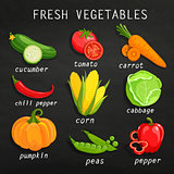 Set of fresh vegetables.