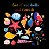 Vector set of sea shells and starfis