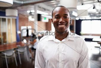 Portrait Of Businessman In Modern Open Plan Office