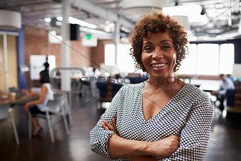 Portrait Of Mature Businesswoman In Modern Open Plan Office