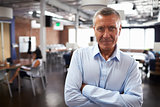 Portrait Of Mature Businessman In Modern Open Plan Office